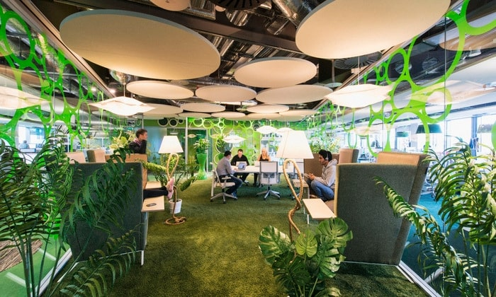 modern office with indoor plants and grass on the floor